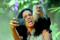 Katy Perry taking selfie with monkey while filming her new videoclip, Roar